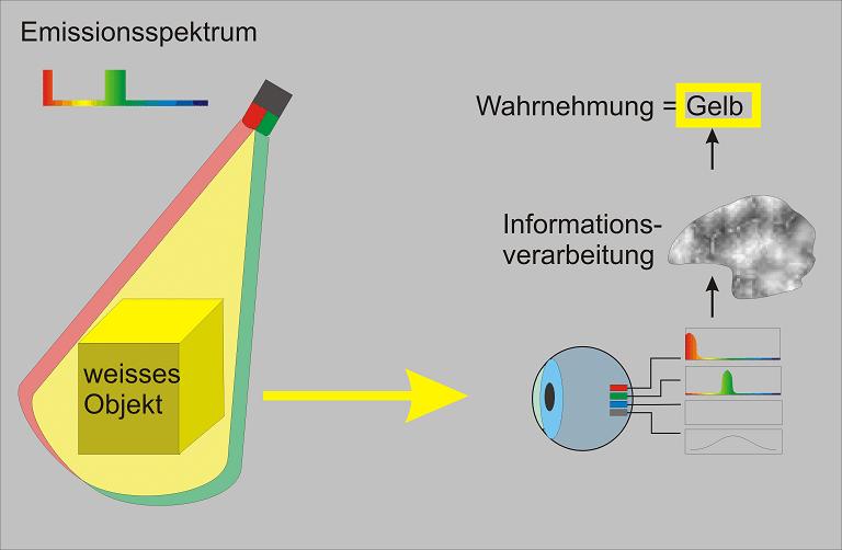 Schaubild für Farbwahrnehmung durch Interpretation im Gehirn