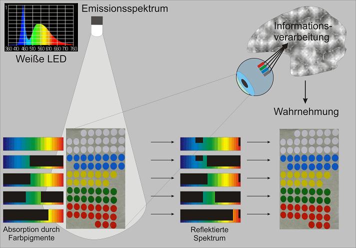Beleuchten von pigmentierten Körpern hat zur Folge, dass nur die Lichtfrequenzen reflektiert werden, mit den die Pigmente auch bestrahlt werden.