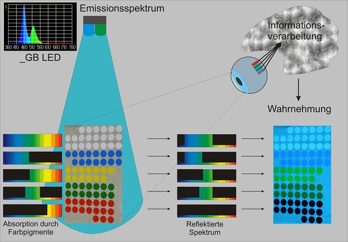 Beleuchten von pigmentierten Körpern hat zur Folge, dass nur die Lichtfrequenzen reflektiert werden, mit denen die Pigmente auch bestrahlt werden.