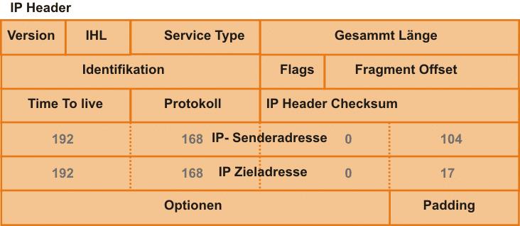 IP-Header Aufbau